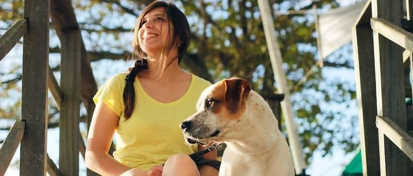 dog-huggy-image02