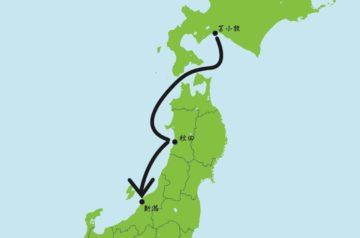 tomakomai-niigata-top-image