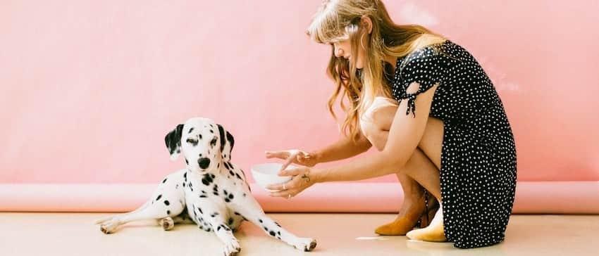 dog-huggy-image04