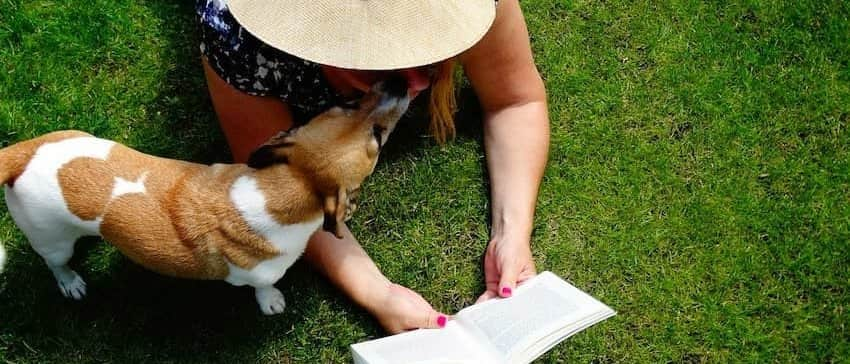 dog&reading girl